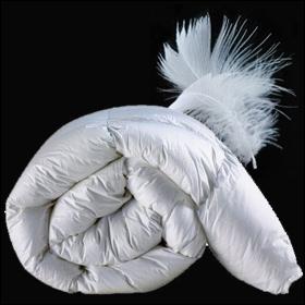 een warm bed…