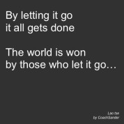 By letting go - CoachSander.nl