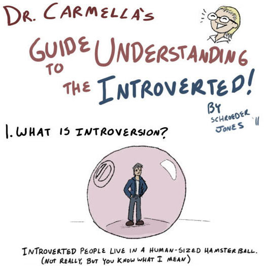 Guide to understanding the introverted 1 - CoachSander.nl