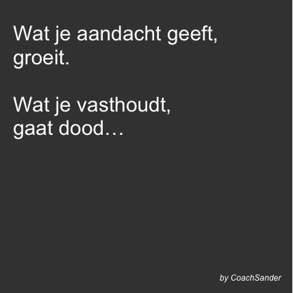 Wat je aandacht geeft... - CoachSander.nl