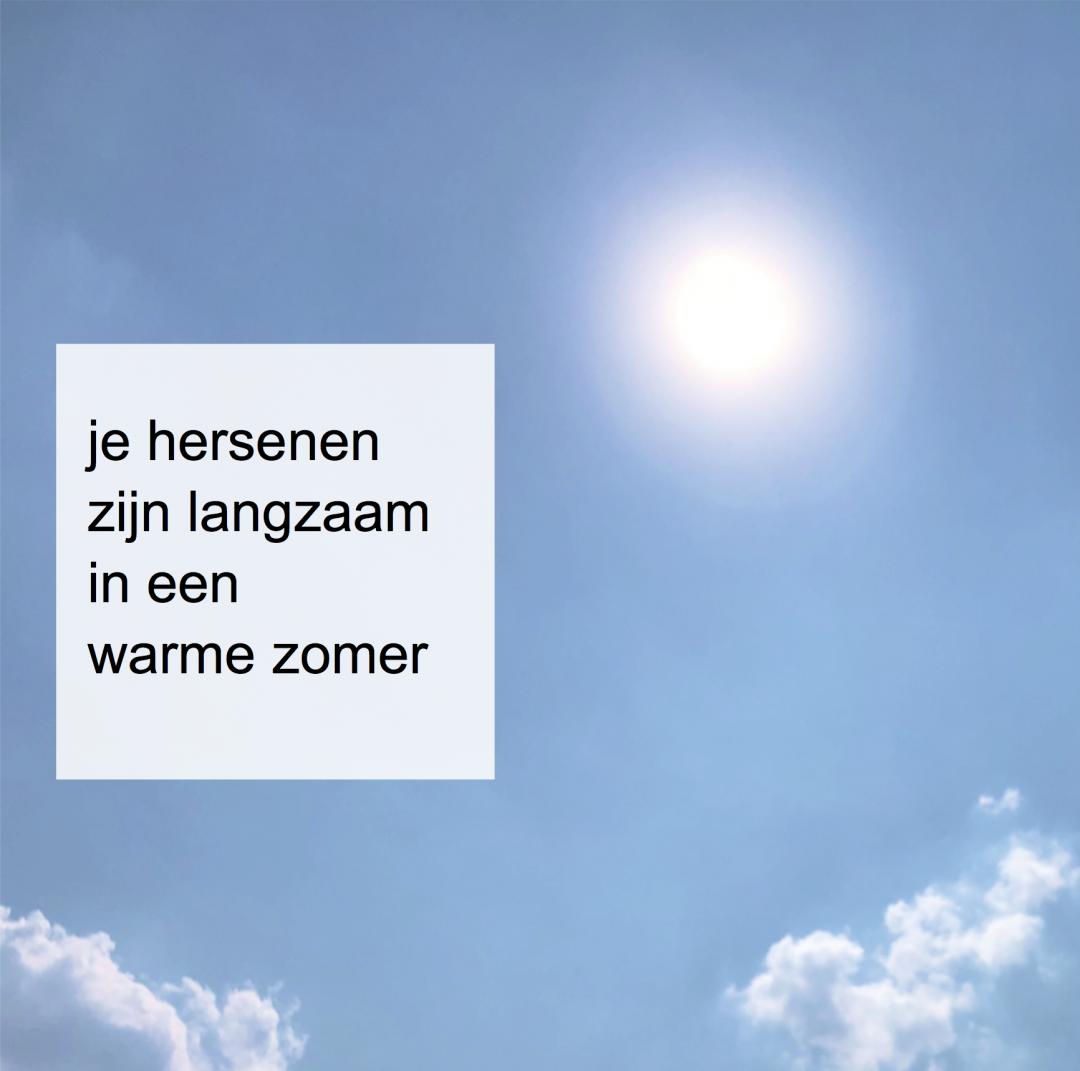 hersenen zijn langzaam in een warme zomer - CoachSandew.nl